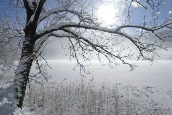 winter-3061397_1920
