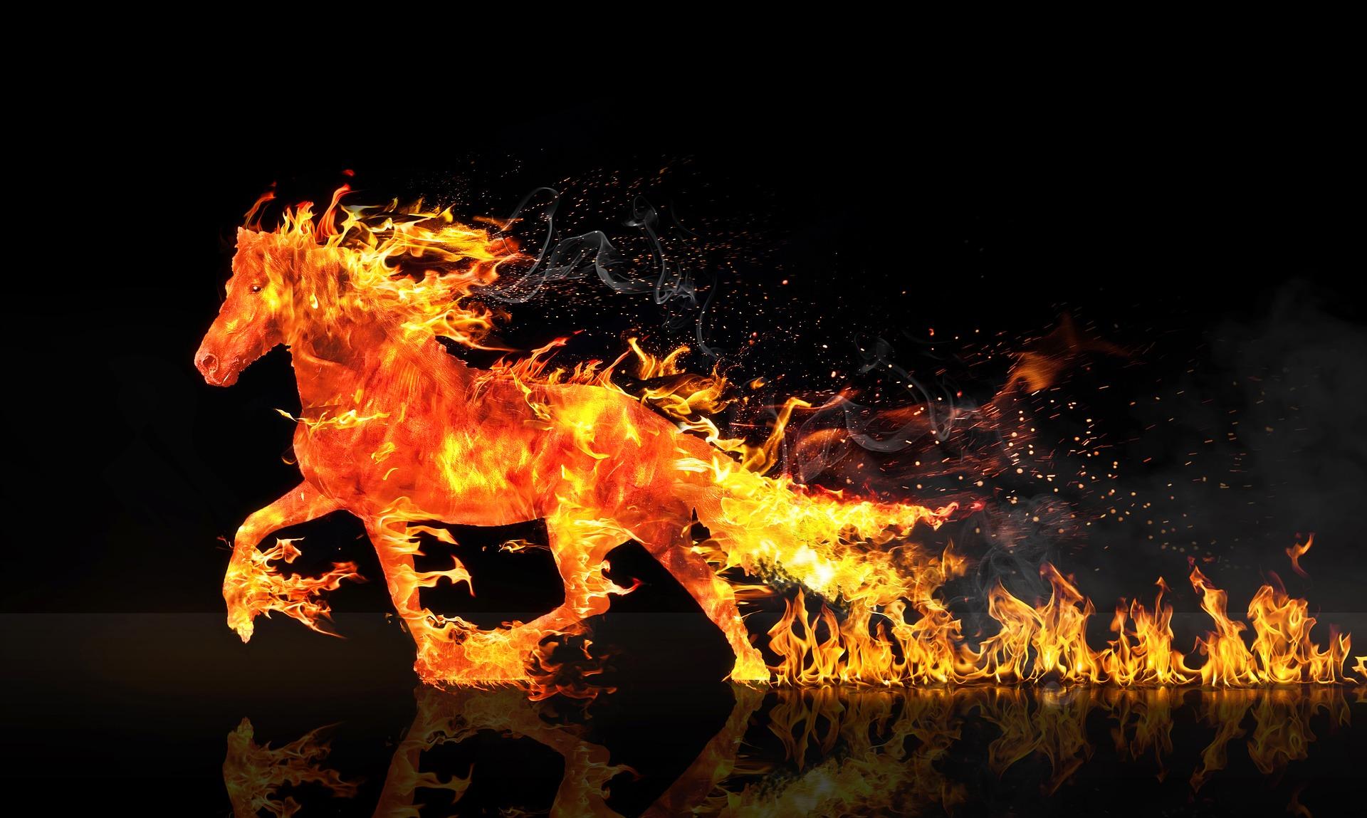 fire-horse-2492947_1920
